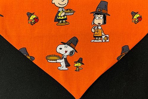 Peanuts Harvest