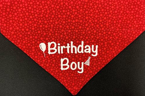 Birthday Boy - Red Circles