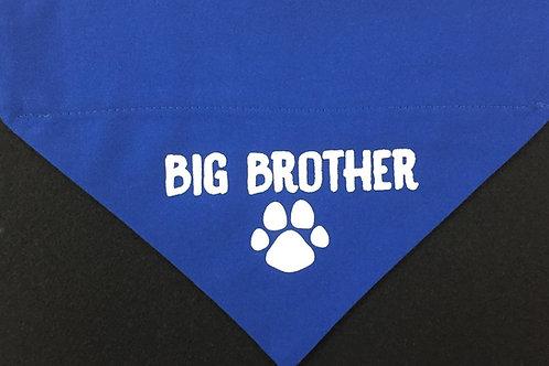 Big Brother - Blue