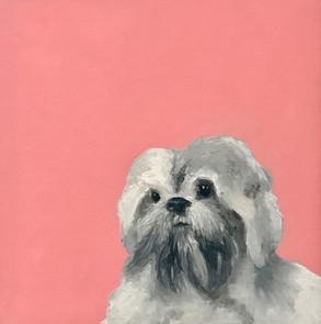 Artist's Dog, Cody