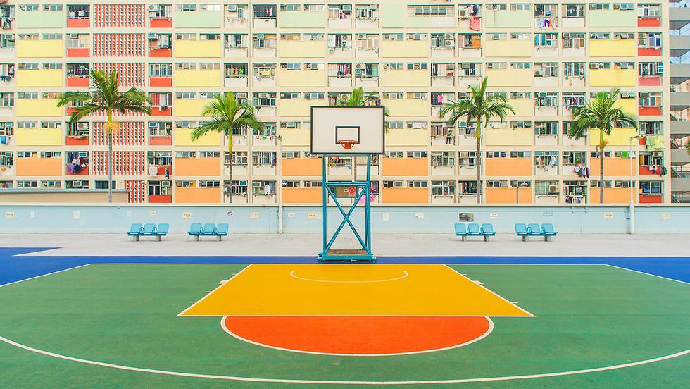教練課程 籃球 足球 排球