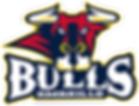 Amarillo_Bulls_Logo.svg.png
