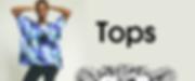 topsheader.png
