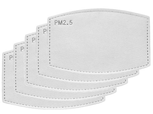 PM 2.5 filter (5 pack)