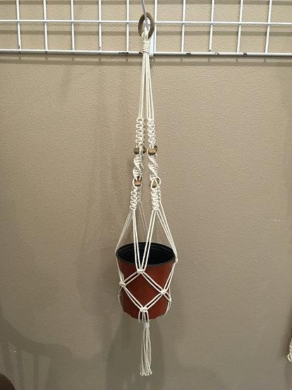 ivory plant hanger