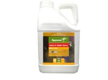 Insect and Spider Spray 5ltr