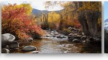 $320,000+ Family Medicine In Utah | NO CALL (EVER!)