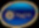 аморе лого (1).png
