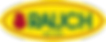 RAUCH Logo_CMYK_IsoCV2_with1919.png