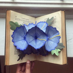Pop-up Book of Flowers