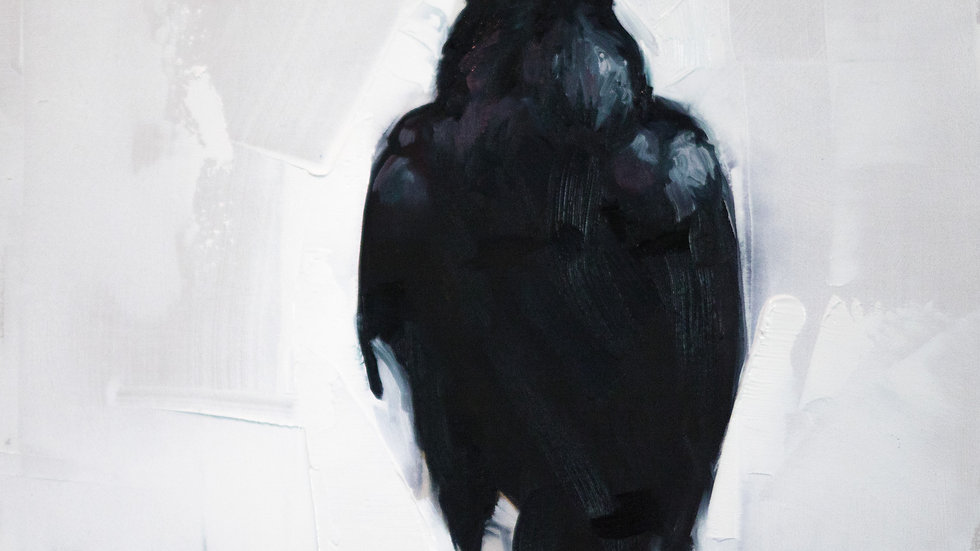Whitewash Raven