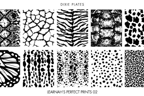 Dixie Mini Learnah's Perfect Prints 02 Plate