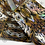 Thumbnail: Tiger King Transfer Foil