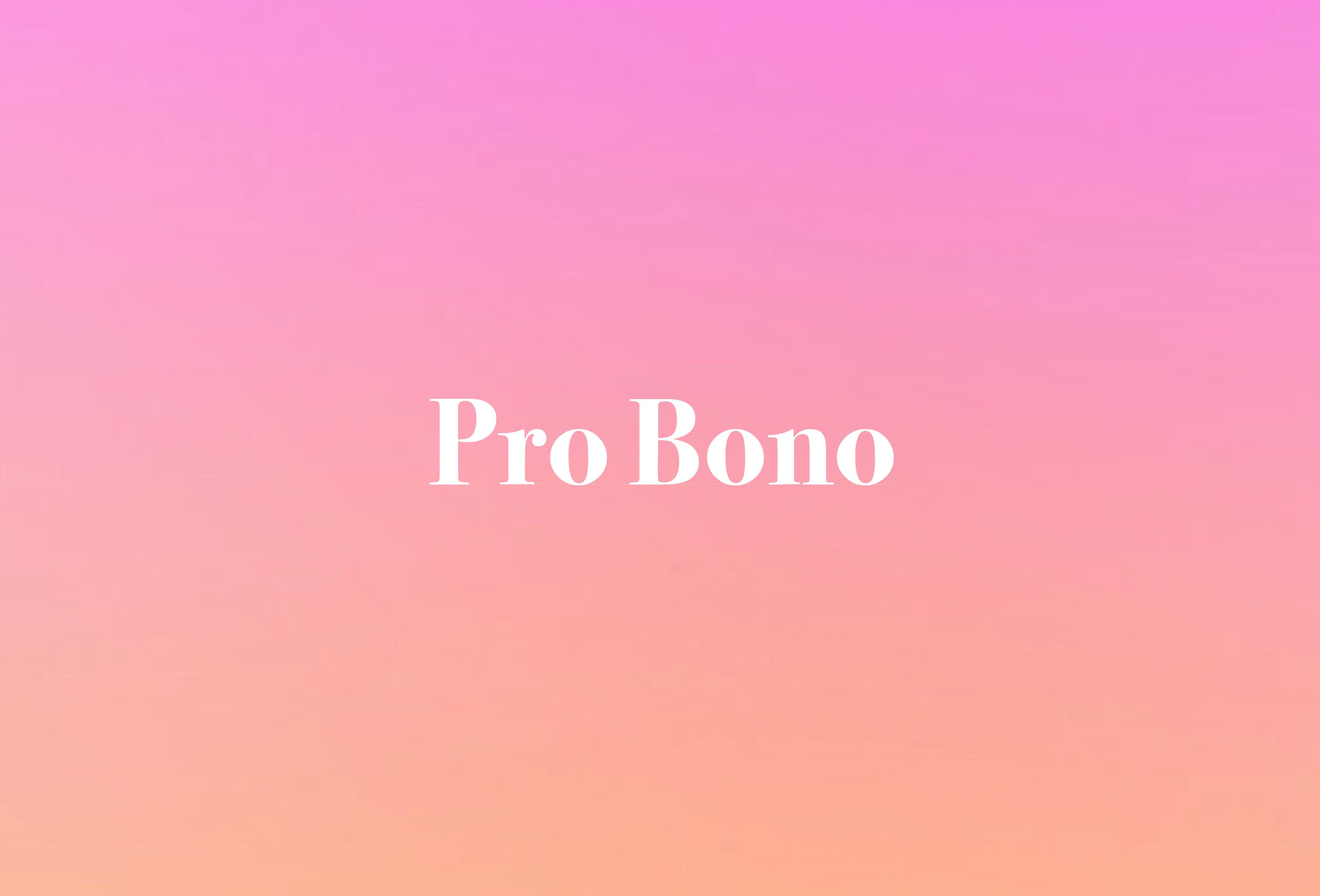 Portfolio2017_Probono_cover-01