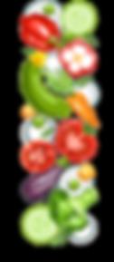 Orenstein project- salad 1