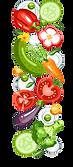 stock-vector-fresh-healthy-vegetables-ba