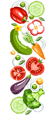 stock-vector-fresh-healthy-vegetables-ba