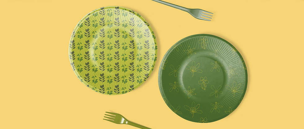 paper plates.png