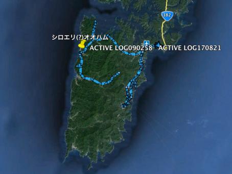 2015 対馬油汚染海鳥調査第3回二日目(2/10)調査ログ