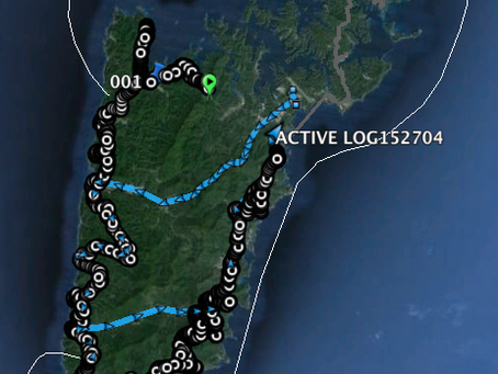 2015 第2回対馬油汚染海鳥調査1日目(2/1)調査LOG