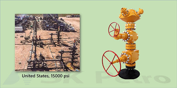 SK Petro, Well Head, Christmas Tree, Fracture Type