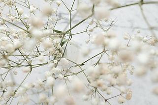 clique-images-zzIvFfJxNc8-unsplash.jpg