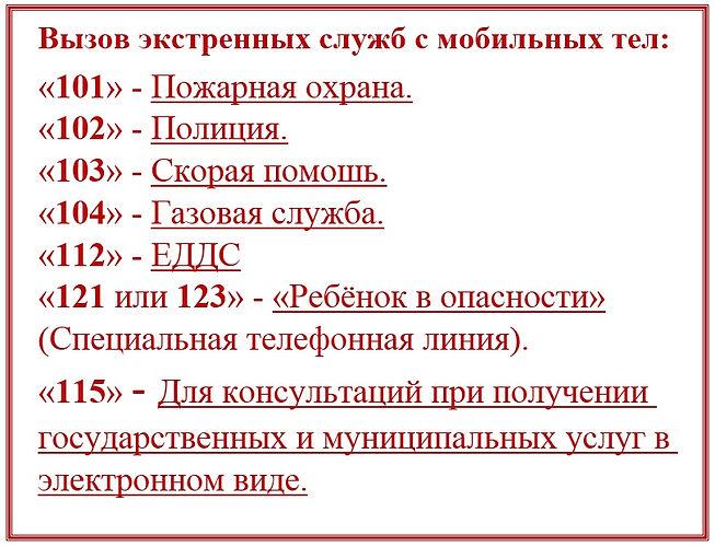 7(1).jpg