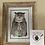 Thumbnail: Grumpy Owl postcards