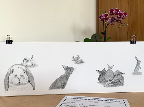 Bunny Bunch Limited Edition Print Large