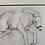 Thumbnail: Foal Fun Print