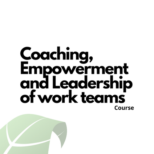 Coaching, Empowerment and Leadership of work teams