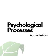 Psychological Processes T.A