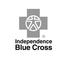 ibx-logo.png