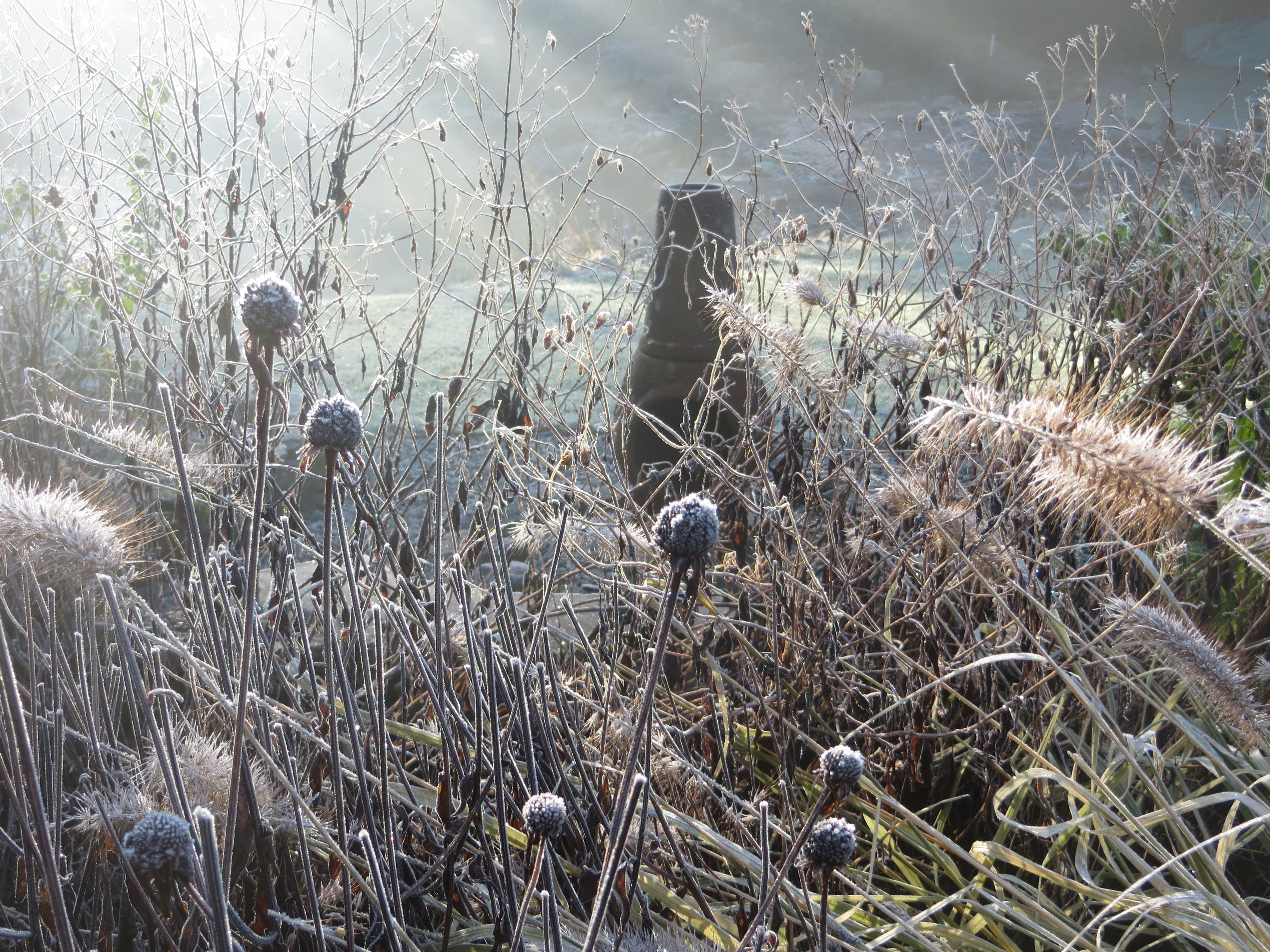 First frosts...