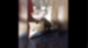Screen Shot 2019-02-15 at 11.43.44 PM.pn