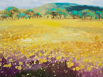 Feather Flowers #4 acrylic on canvas_edited.jpg