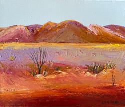 Wonders of the Desert