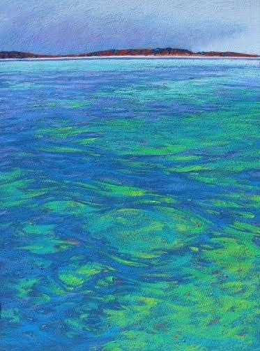 Shark Bay Waters