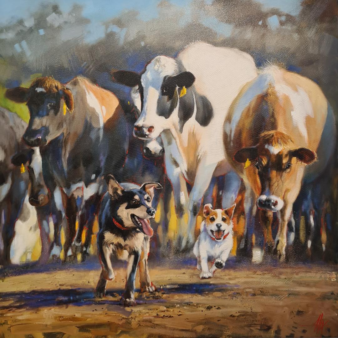 Leading The Herd