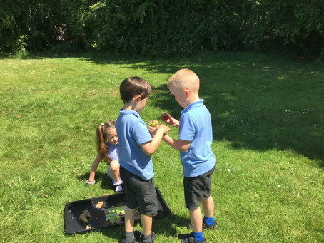 Year 1's Great Science Share - we made bird feeders!
