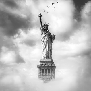 Statue of Liberty with Birds