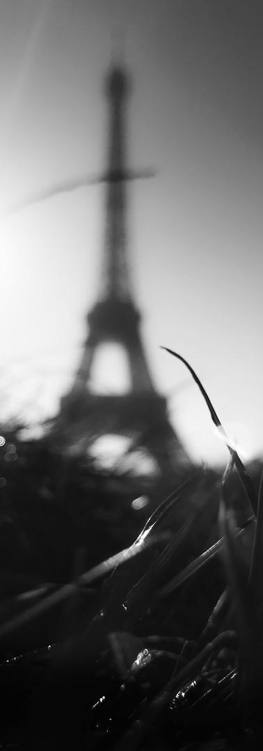 Tour Eiffel 5