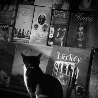 Istanbul, 5