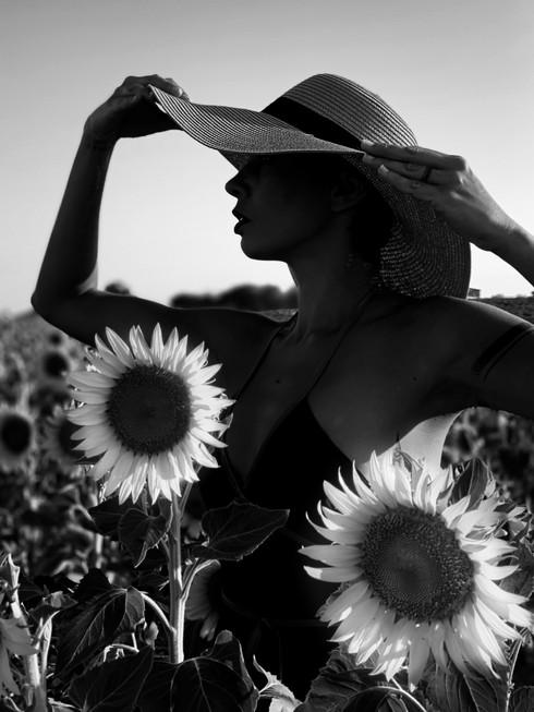 Patricia, Provence 2