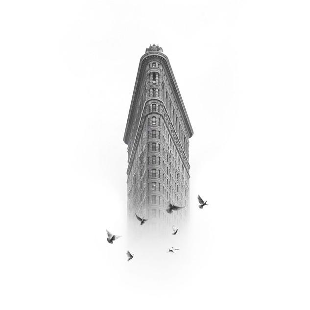 Flatiron with Birds