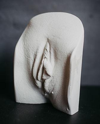 Vulva Casting