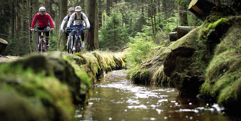 Mountainbiken im Bodetal