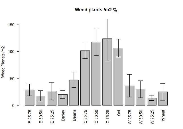 Weed plants  m2.jpeg