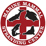 mmsc-icon-185.png