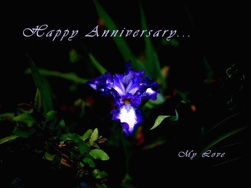 Happy Anniversary- Purple Iris